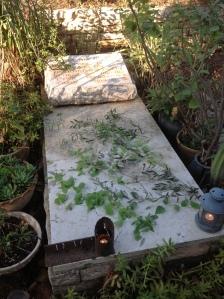 הקבר של ליאור יונתן בבית העלמין של קיבוץ שריד, 2012